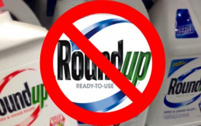 You've Been Consuming this Damaging Substance Everyday | Glyphosate